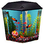 Top Fin® Aqua Scene 1 Gallon Desktop Aquarium Starter Kit
