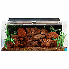 SeaClear 40 Gallon Aquarium
