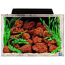 SeaClear 20 Gallon Aquarium & Hood