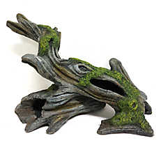 All Living Things® Bogwood Reptile Ornament
