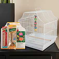 All Living Things® Parakeet Starter Kit