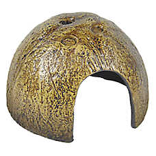 All Living Things® Coconut Shell Reptile Ornament