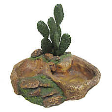 All Living Things® Cactus Reptile Dish