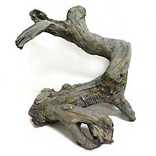 All Living Things® Gnarled Wood Reptile Ornament