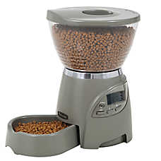 petmate le bistro portion control pet feeder dog