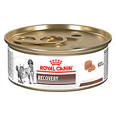 Royal Canin® Veterinary Diet Recovery RS Dog Food