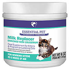 21st Century Milk Replacer Cat and Kitten Food Supplement