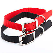 Grreat Choice® Buckle Dog Collar