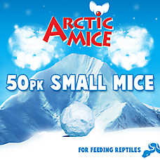 Arctic Mice Small Frozen Mice