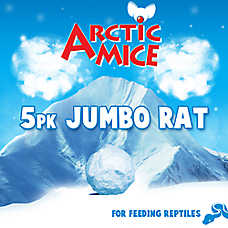All Living Things Jumbo Frozen Rats