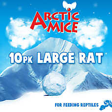 Arctic Mice Large Frozen Rats