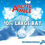 Arctic Mice Large Frozen Rats