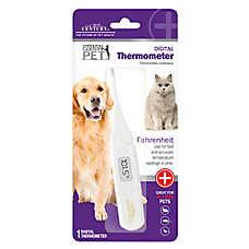 21st Century Digital Pet Thermometer