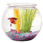 Grreat Choice® 1 Gallon Fish Bowl