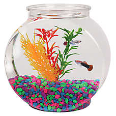 Grreat Choice® .5 Gallon Fish Bowl