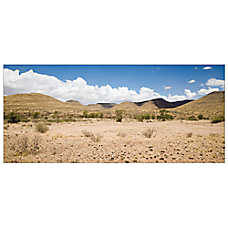 All Living Things® Desert Terrarium Cling Reptile Background