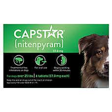 Capstar Over 25 Lb Dog Flea Treatment