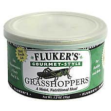 Fluker's® Gourmet Style Grasshoppers