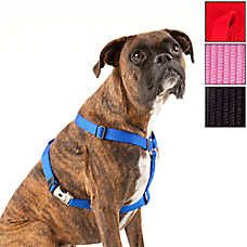 Top Paw® Signature Dog Harness