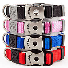 Top Paw® Signature Dog Collar