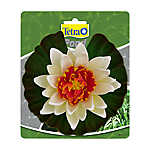 Tetra® Pond Decorative Water Lily