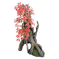Top Fin® Asian Red Leaf Tree Aquarium