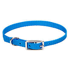 Coastal Pet Products Personalized Dog Collar