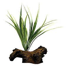 Top Fin® Wood Log Plant