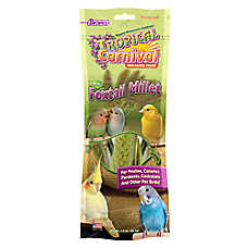 Brown's® Tropical Carnival® Natural Foxtail Millet Bird Treats