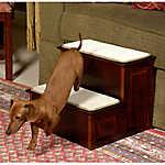 Mr. Herzher's Decorative 2-Step Pet Step
