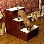 Mr. Herzher's Decorative 3-Step Pet Step