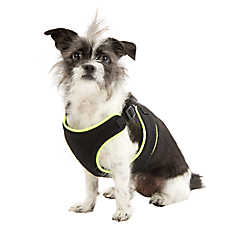 Top Paw® Dog Harness