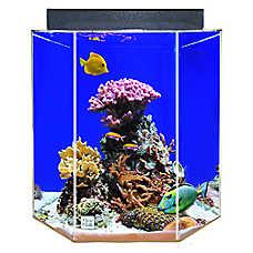 Clear-For-Life 35 Gallon Hexagon UniQuarium