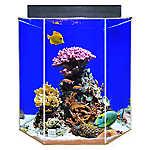 Clear-For-Life 55 Gallon Hexagon Aquarium