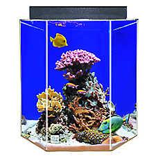 Clear-For-Life 55 Gallon Hexagon UniQuarium