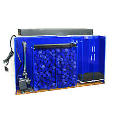Clear-For-Life 60 Gallon Rectangle UniQuarium