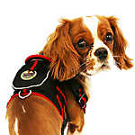 Pet Life 'Double-Ring' Pet Harness with Built-in Velcro Back Pouch