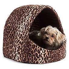 Best Friends by Sheri Leopard Pet Hut