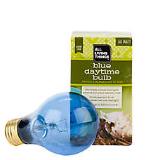 All Living Things® Hermit Crab Blue Daytime Bulb