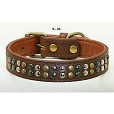 Hip Doggie Metro Dog Collar
