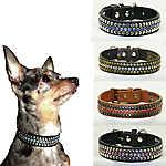 Hip Doggie Winston Dog Collar