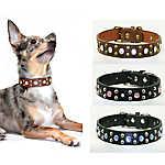 Hip Doggie Stone Cowboy Dog Collar