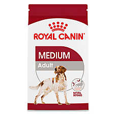 Royal Canin® Size Health Nutrition Medium Adult Dog Food