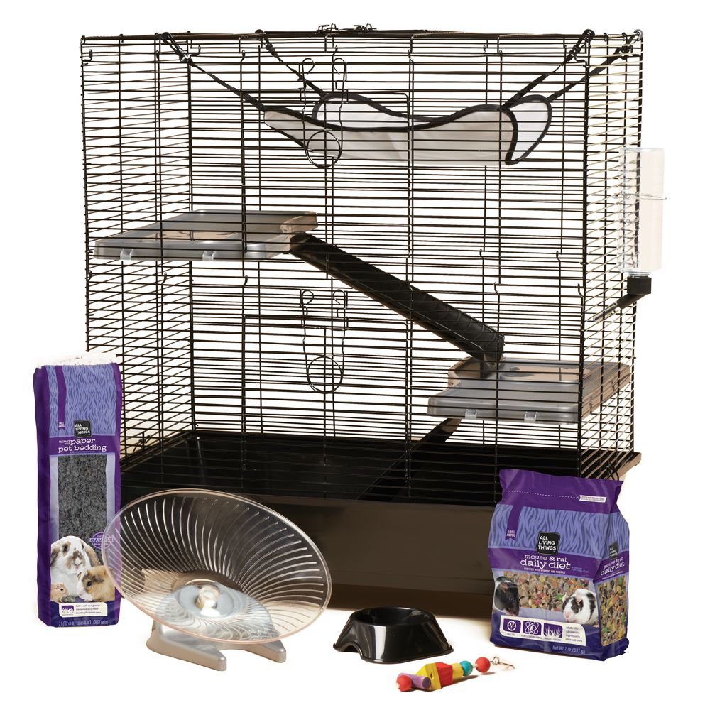 Image Result For Pet Rat Supplies Online