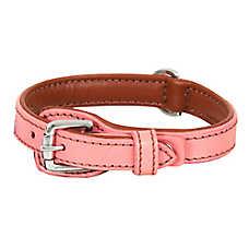 Petmate® Dog Collar
