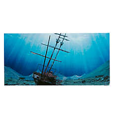 Top Fin® Tropical & Shipwreck Aquarium Background