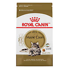 royal canin breed health nutrition maine coon cat food cat dry food petsmart. Black Bedroom Furniture Sets. Home Design Ideas