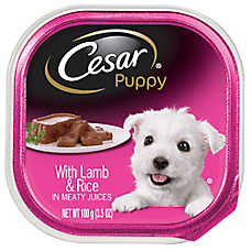 Cesar® Canine Cuisine Puppy Food - Lamb & Rice