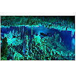 National Geographic™ 3-D Lenticular Cave Aquarium Background