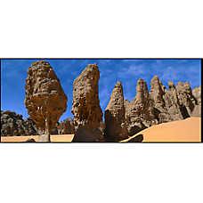 National Geographic™ 3-D Lenticular Desert Aquarium Background